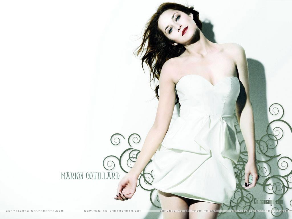 法国电影明星奥斯卡最佳女主角marion